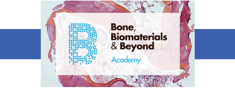 Bone biomaterials & beyond
